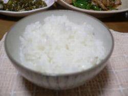 天日古代塩 レポ ご飯