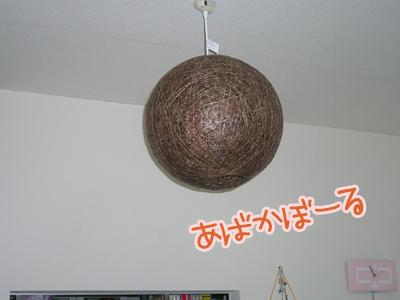DSCN2982.jpg
