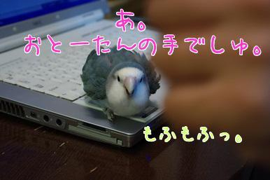 0507_2.jpg