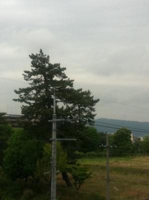 曇りなり~