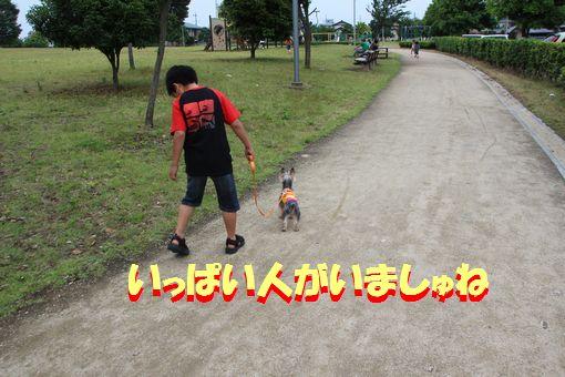 00520110612.jpg
