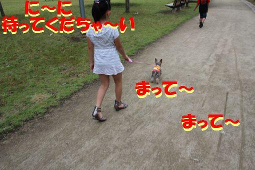 00620110612.jpg