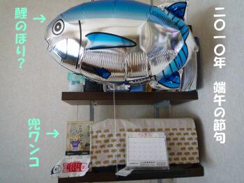 P1040766-100505.jpg