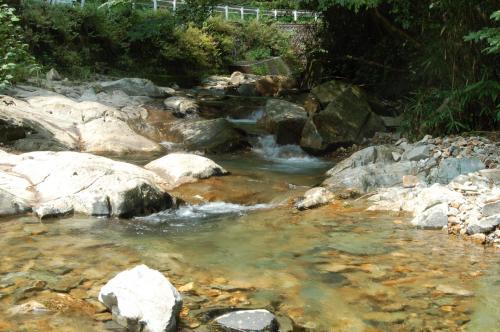 坂本大滝滝口1