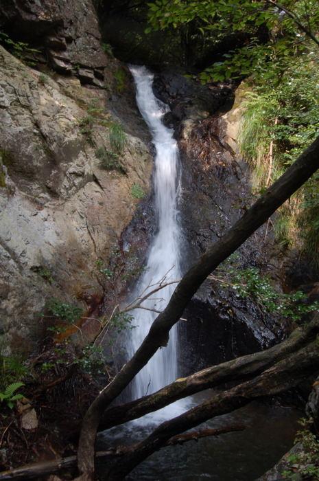 滝ヶ谷(雄滝)