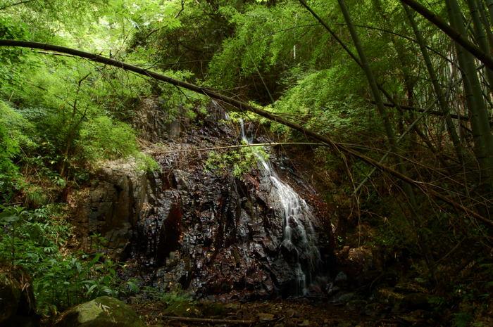 青谷 鳴滝一段目