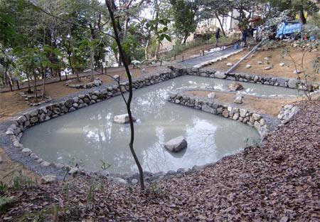 0215姥ヶ池1