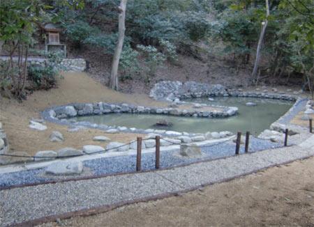0222姥ヶ池3