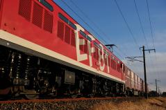 EF81_361