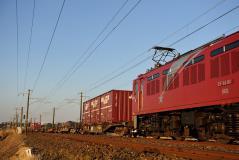 EF81_411