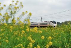 Series E657_62