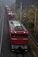 EF81_391