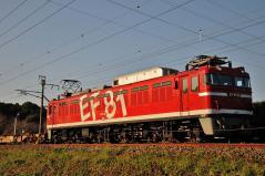 EF81_440