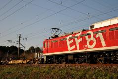 EF81_441