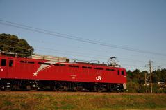 EF81_444
