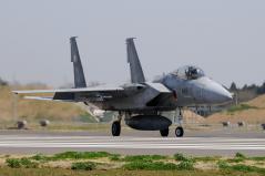 Hyakuri AB_F-15J_30