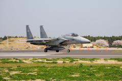 Hyakuri AB_F-15J_35