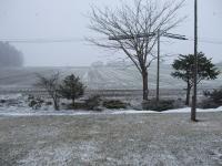 100413雪②