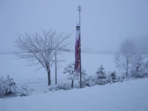 100421雪