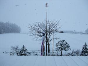 100429雪