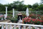 DSC_0360_convert_20120604091821.jpg