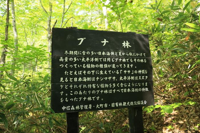 2014_0913_8.jpg