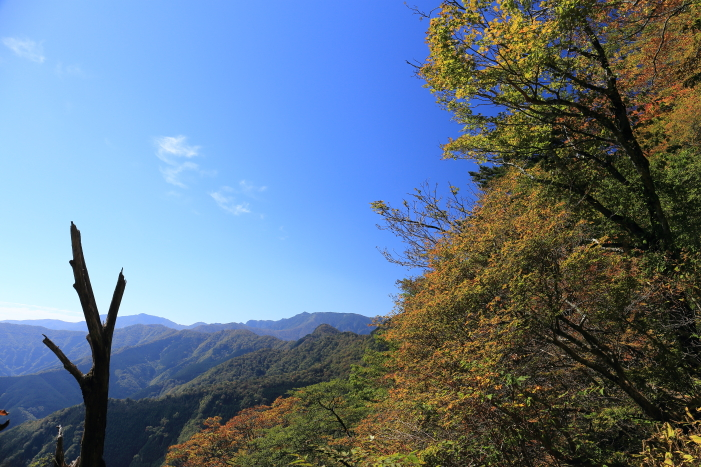 2014_1018_27.jpg