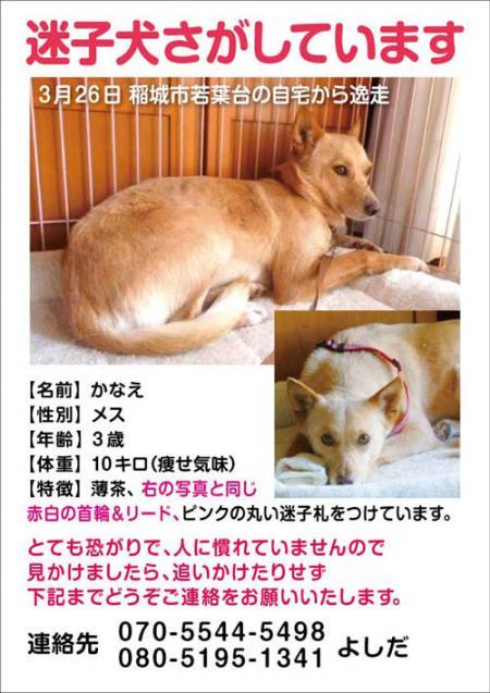 「かなえ」A4判_convert_20120401083136