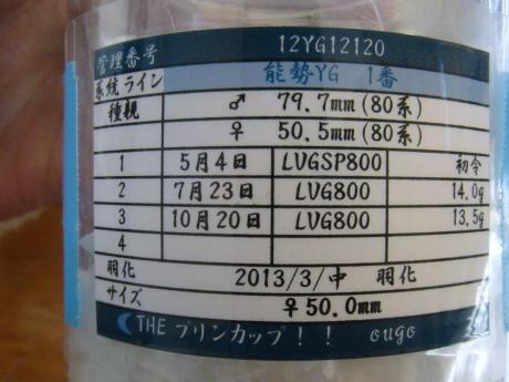 50mm ♀ 管理表