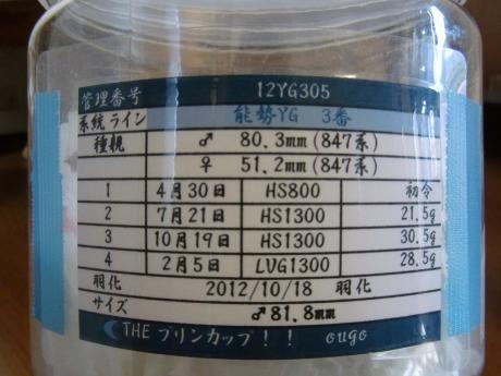 81.8mm ♂ 管理表