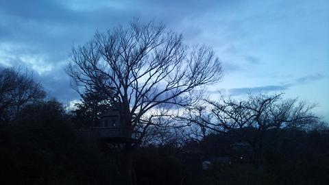 DSC_0411130104北風