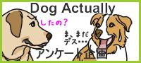 DogactuallyBanner