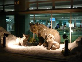 たんちょう釧路空港2