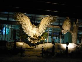 たんちょう釧路空港5