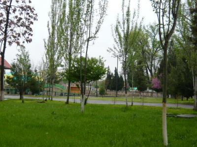 タシケント市街の観光139