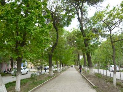 ブハラ旧市街の観光122