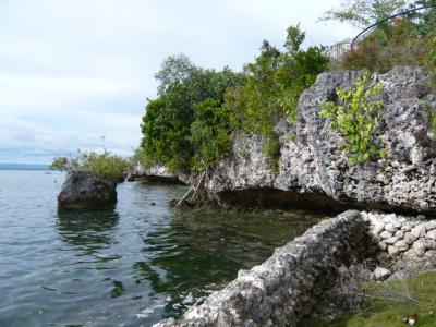 パングラオ島からセブ島へ9