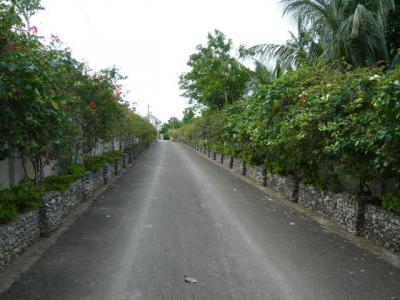パングラオ島からセブ島へ5