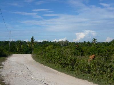 パングラオ島からセブ島へ2