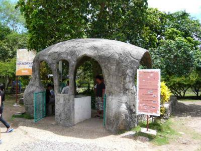 パングラオ島からセブ島へ14
