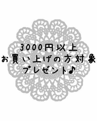 s-3000.jpg