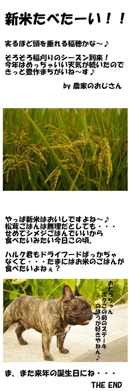秋の味覚♪