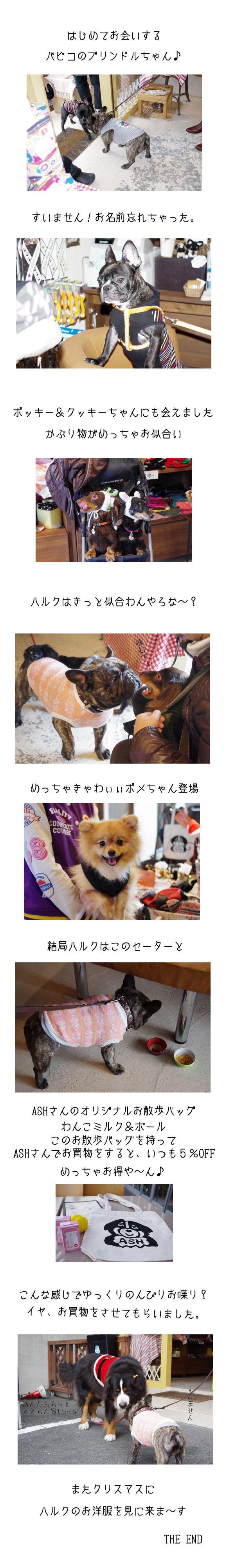 ASH秋祭り♪♪