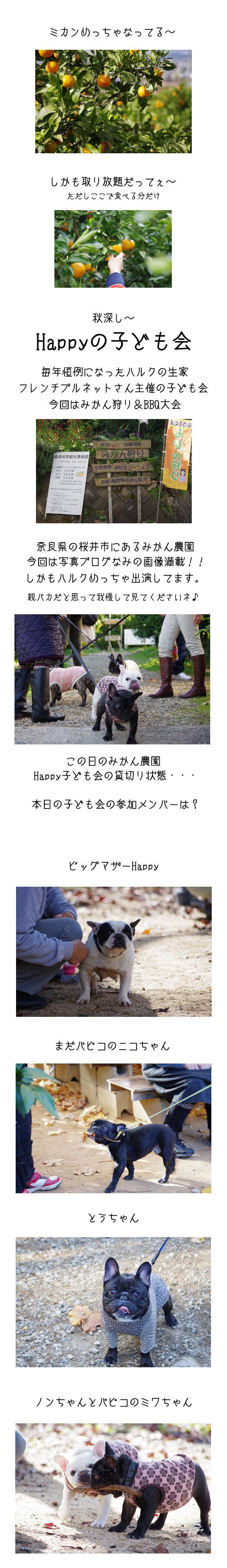 Happy子どもの会♪
