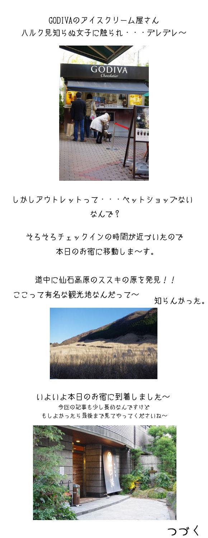ハルク家in箱根親睦旅行C