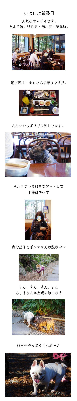 ハルク家in箱根G