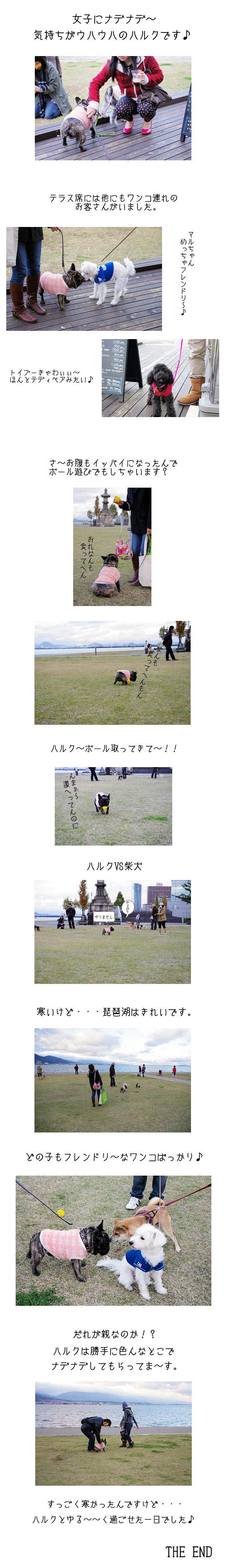 なぎさ公園♪♪