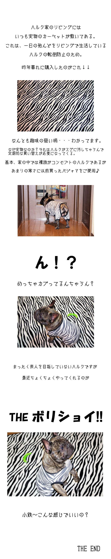 狙ったわけぢゃナイ!!