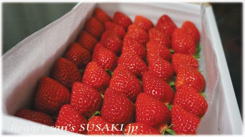 久保さんイチゴ1