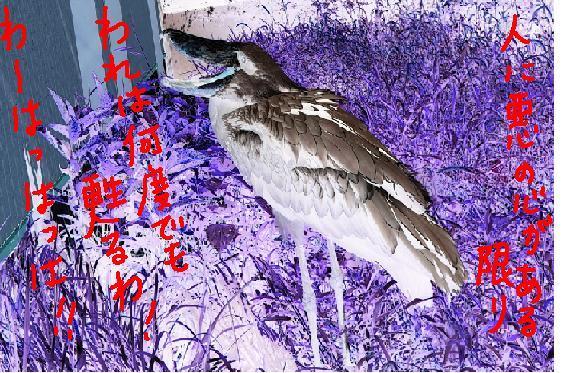 のいち動物公園4